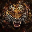 tigerman05