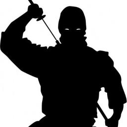 DeadlyShadow413