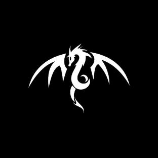 DragonX360