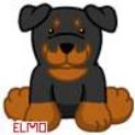 Elmo26
