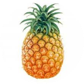 pineapplegamer19