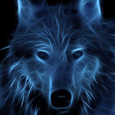 Rain_Wolf