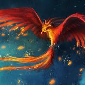 Phoenix49