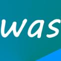 Wasknijper
