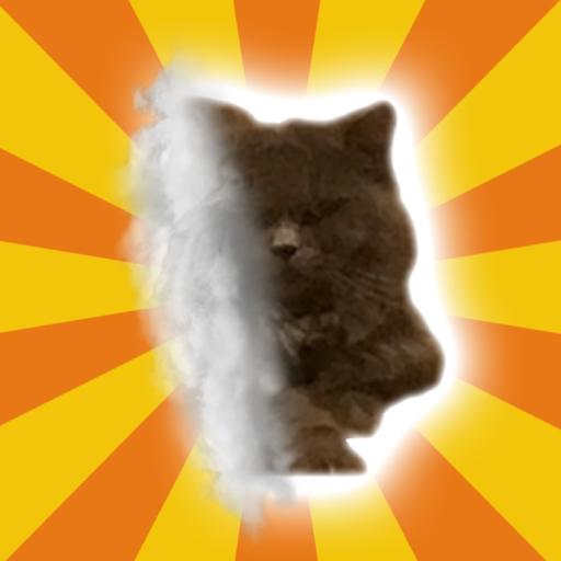 tubeycat