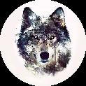 Razer.WolfPack