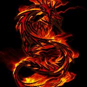 BlackFireDragon