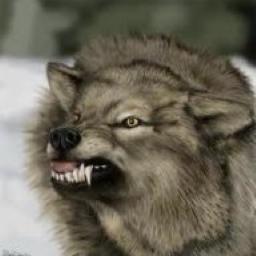 WolfspiritM